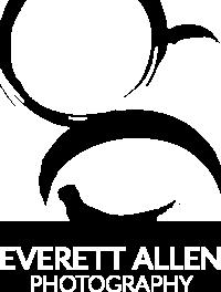 Everett Allen Photography logo
