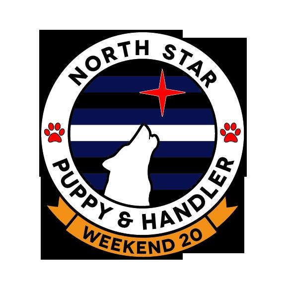 2020 NSPAH Logo